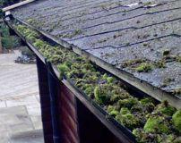 Fotos de London Roof Clean
